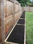 Trellis system designed and installed by the Sun and the Soil. St Peters, MO