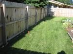 Fence-Trellis Garden - Before