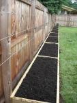 Fence-Trellis Garden - After